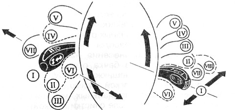 электросхема ваз 2131 карбюратор