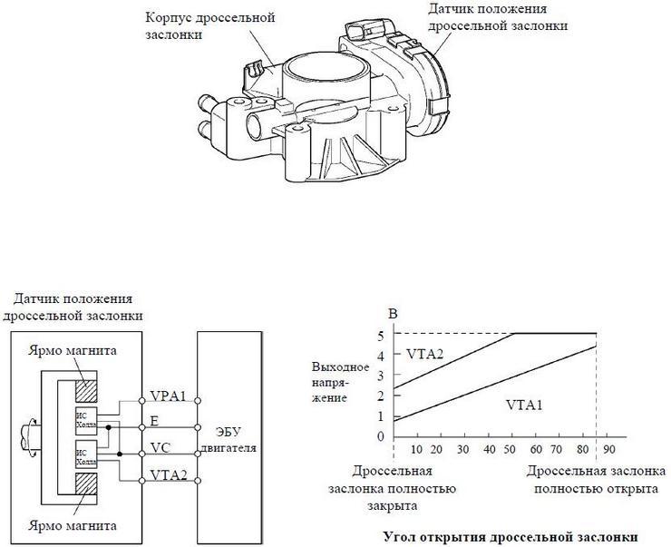 Фото №27 - проверка датчика положения дроссельной заслонки ВАЗ 2110